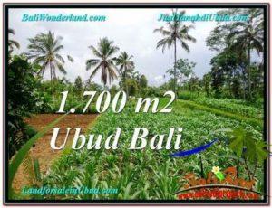 Affordable 1,700 m2 LAND IN UBUD FOR SALE TJUB560