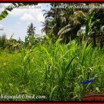 Exotic 450 m2 LAND SALE IN UBUD BALI TJUB535