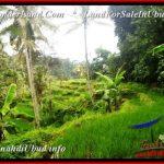 Exotic 579 m2 LAND SALE IN UBUD BALI TJUB538