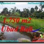 FOR SALE Magnificent PROPERTY LAND IN UBUD TJUB557