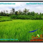 1,200 m2 LAND IN UBUD BALI FOR SALE TJUB559