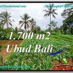 Affordable PROPERTY UBUD LAND FOR SALE TJUB560