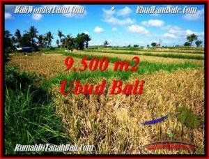 FOR SALE Magnificent 9,500 m2 LAND IN Sentral Ubud TJUB548