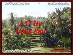 FOR SALE Exotic PROPERTY LAND IN UBUD TJUB549
