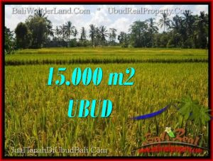 Magnificent PROPERTY LAND IN UBUD BALI FOR SALE TJUB551