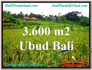 Exotic LAND IN Sentral Ubud BALI FOR SALE TJUB566