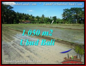 Exotic 1,050 m2 LAND SALE IN UBUD BALI TJUB544