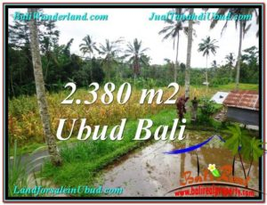 Exotic 2,380 m2 LAND IN UBUD BALI FOR SALE TJUB567