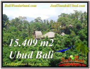 Exotic 15,490 m2 LAND SALE IN UBUD TJUB568