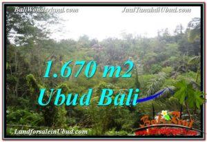 Magnificent UBUD BALI 1,670 m2 LAND FOR SALE TJUB569