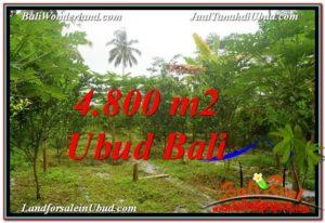 Beautiful 4,800 m2 LAND SALE IN UBUD BALI TJUB571