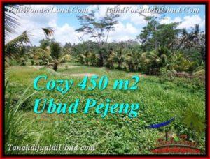 Beautiful UBUD LAND FOR SALE TJUB535