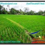 Exotic PROPERTY LAND IN UBUD FOR SALE TJUB564