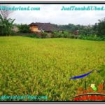 Affordable 3,600 m2 LAND FOR SALE IN UBUD BALI TJUB566