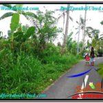 FOR SALE LAND IN Ubud Payangan BALI TJUB567