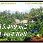 LAND IN Sentral Ubud BALI FOR SALE TJUB568