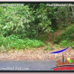 Exotic LAND FOR SALE IN UBUD TJUB569