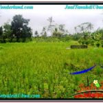 Affordable Ubud Payangan BALI LAND FOR SALE TJUB570