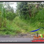 Magnificent LAND IN UBUD FOR SALE TJUB571