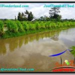 4,200 m2 LAND IN UBUD BALI FOR SALE TJUB561