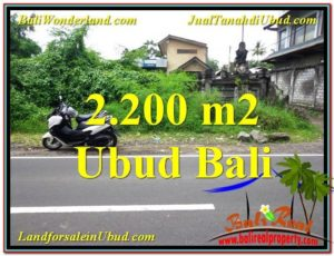 Affordable 2,200 m2 LAND SALE IN UBUD BALI TJUB565