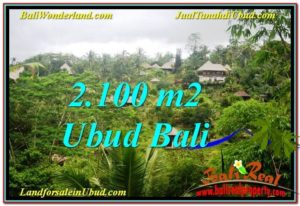Beautiful LAND FOR SALE IN UBUD TJUB572