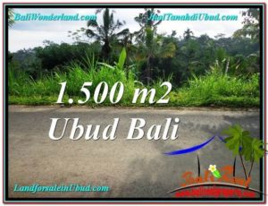 Magnificent PROPERTY 1,500 m2 LAND SALE IN Ubud Tegalalang TJUB556
