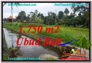 FOR SALE Beautiful PROPERTY 715 m2 LAND IN Ubud Tampak Siring TJUB557