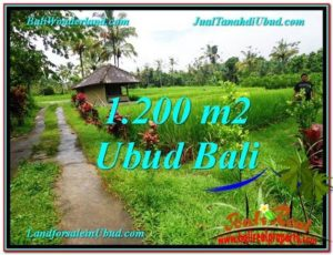 Exotic PROPERTY 1,200 m2 LAND SALE IN Ubud Payangan TJUB559