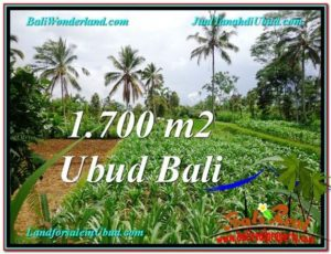 FOR SALE Magnificent PROPERTY 1,700 m2 LAND IN Ubud Payangan TJUB560
