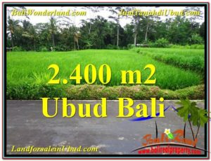Exotic LAND IN UBUD FOR SALE TJUB563