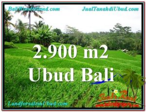 Affordable PROPERTY 2,900 m2 LAND FOR SALE IN Ubud Tampak Siring TJUB564