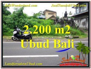 Beautiful PROPERTY UBUD BALI LAND FOR SALE TJUB565