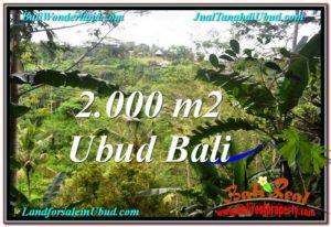 FOR SALE Affordable 2,000 m2 LAND IN UBUD BALI TJUB573