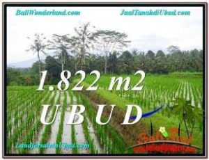 FOR SALE Magnificent 1,822 m2 LAND IN UBUD TJUB574