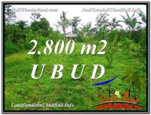 FOR SALE Magnificent PROPERTY 2,800 m2 LAND IN UBUD BALI TJUB592