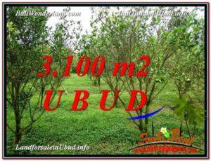 Magnificent PROPERTY LAND SALE IN UBUD TJUB593