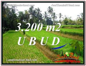 Magnificent PROPERTY LAND FOR SALE IN UBUD TJUB594
