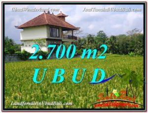 FOR SALE Beautiful PROPERTY LAND IN UBUD TJUB595