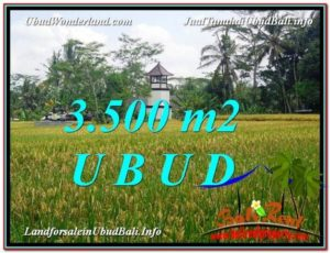 Beautiful PROPERTY LAND IN UBUD FOR SALE TJUB596