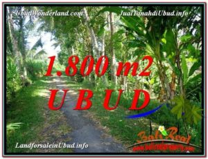 1,800 m2 LAND FOR SALE IN UBUD BALI TJUB597