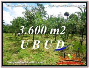 Affordable 3,600 m2 LAND IN UBUD BALI FOR SALE TJUB599