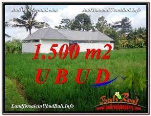 Affordable LAND IN Sentral Ubud BALI FOR SALE TJUB600