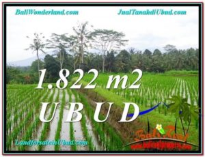 Affordable PROPERTY 1,822 m2 LAND IN UBUD BALI FOR SALE TJUB574