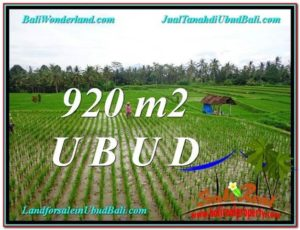 Exotic PROPERTY 920 m2 LAND FOR SALE IN Ubud Payangan TJUB575