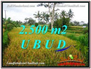 Magnificent PROPERTY 2,500 m2 LAND IN Ubud Pejeng FOR SALE TJUB577