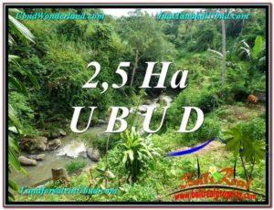 Beautiful PROPERTY Sentral Ubud 26,000 m2 LAND FOR SALE TJUB579