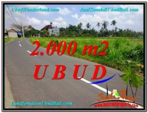 FOR SALE Beautiful PROPERTY 2,000 m2 LAND IN UBUD BALI TJUB580