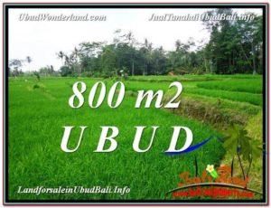 Ubud Pejeng BALI LAND FOR SALE TJUB581
