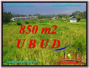 Affordable LAND SALE IN Ubud Pejeng BALI TJUB583